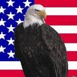 Eagle Flag Square
