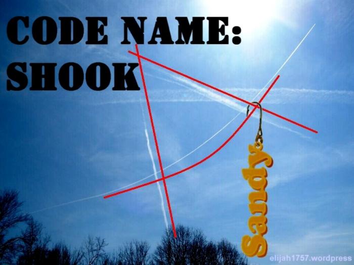 Code Name: SHOOK
